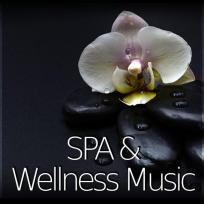 SPA & Wellness Music – Spirytual and Smooth Background Music with Nature Sounds for Beauty Therapy, Shiatsu and Aromatherapy, Healing by Touch, Mindfulness Meditation and Relaxation by Spa Music Paradis
