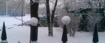2 bulgari