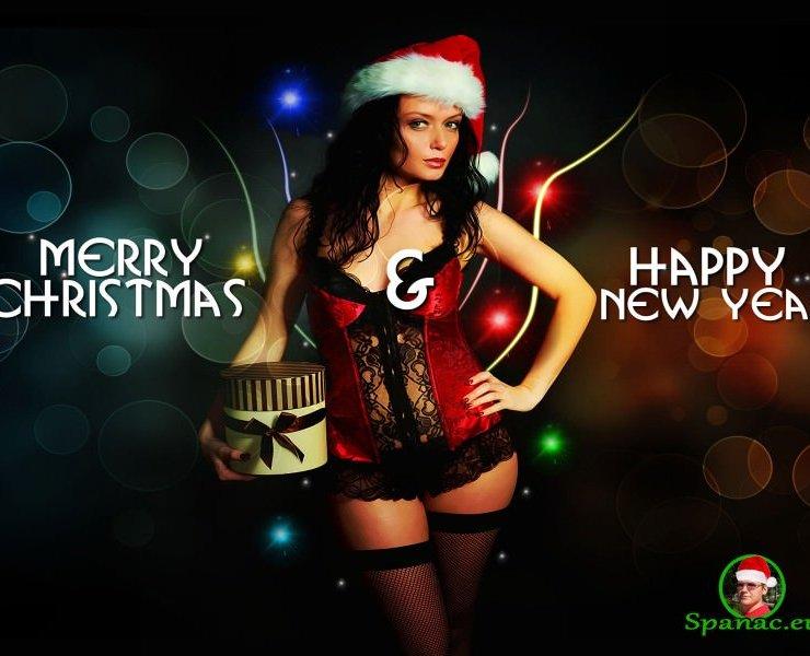 Happy-New-Year-Santa-Girl copy