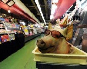 porc-bucurestean
