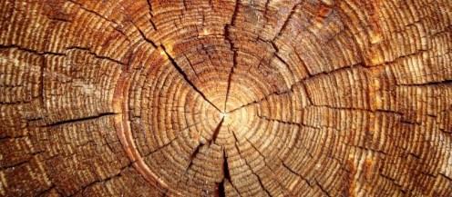 490-wood-1