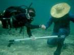 Diving in Havana