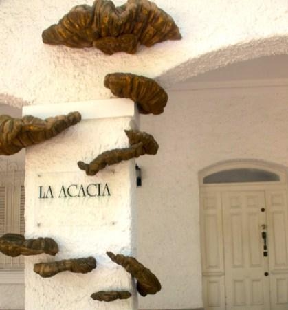 Galería La Acacia Habana