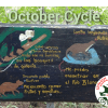 October Spanish Immersion Cycle