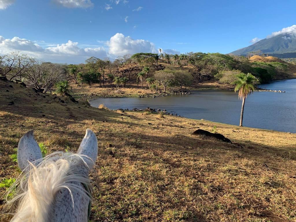 Horseback tour language activity _ Spanish immersion program