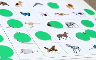 Bingo in the World Language Classroom