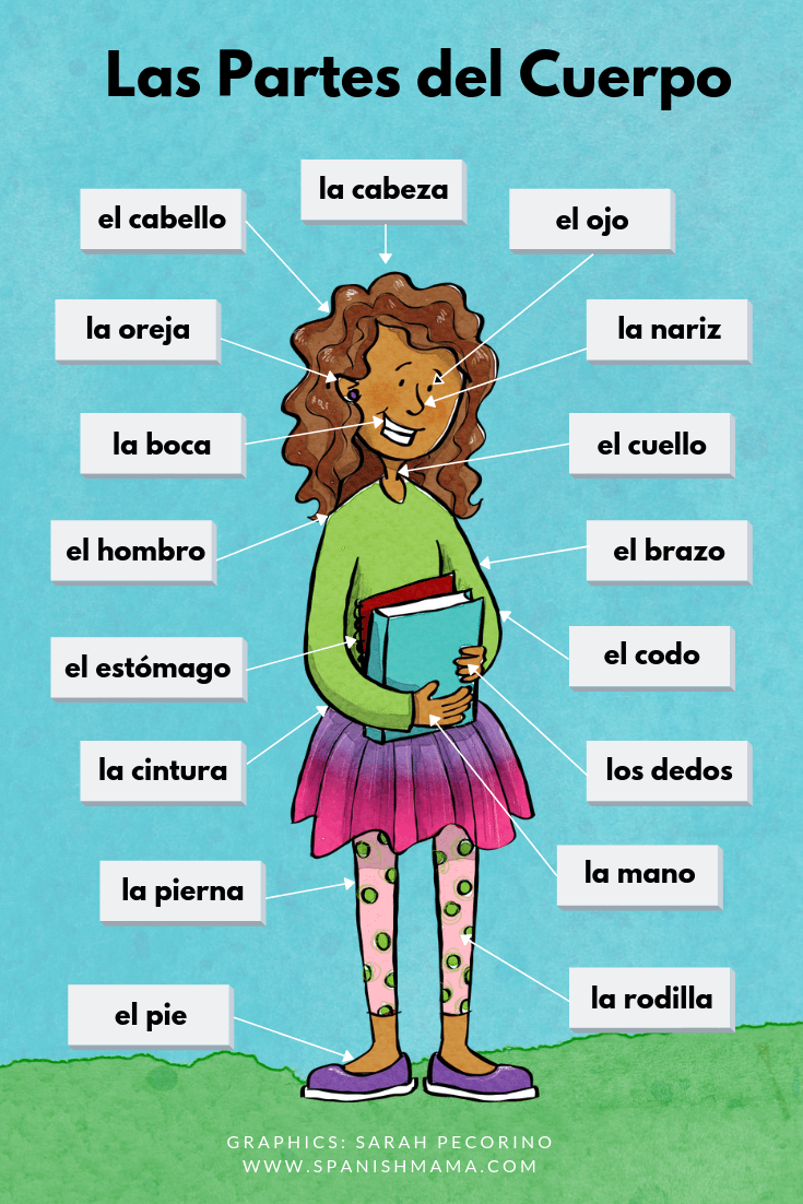 Body Parts in Spanish: Games and Activities for Learning Them