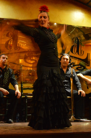 Spark Spanish school tours watch flamenco show