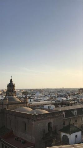Wonen en studeren in Sevilla-5