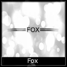 Fox Airgun Spares Logo