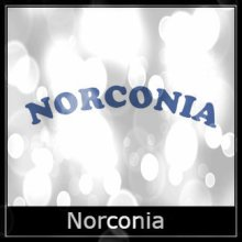 Norconia Airgun Spare Parts