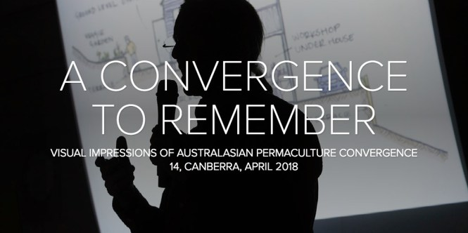 A CONVERGENCE TO REMEMBER