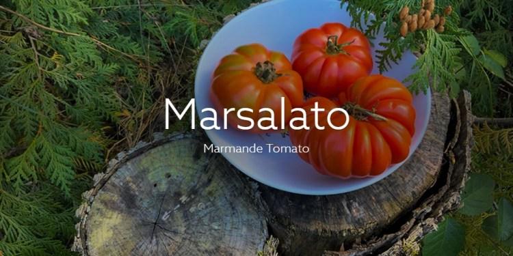 Marsalato marmande tomatoes