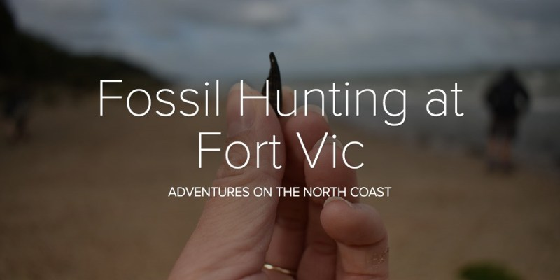 Fossil Hunting at Fort Vic