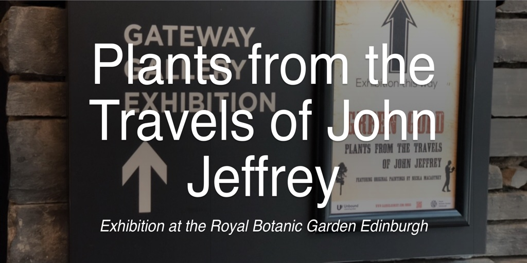 Plants from the Travels of John Jeffrey