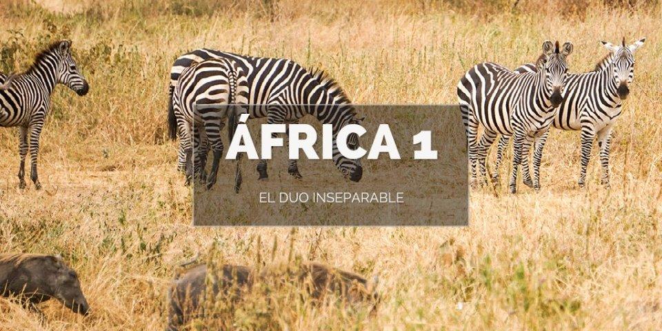 áfrica 1