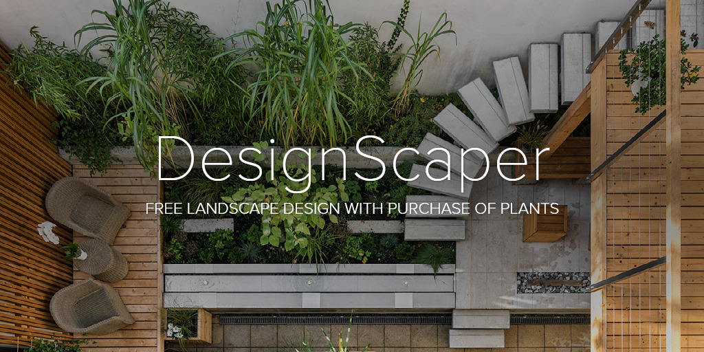 image: free landscape design with plants purchase.