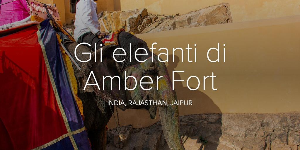 Gli elefanti di Amber Fort