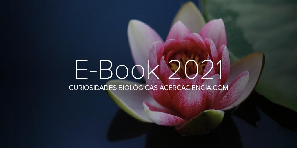 XI E-Book AcercaCiencia