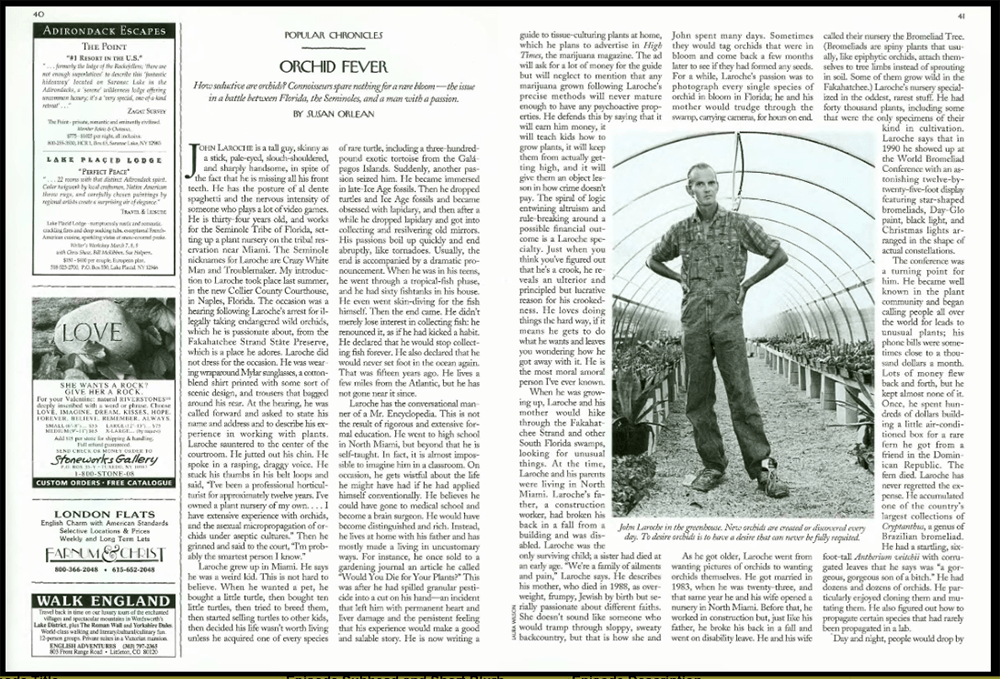 The opening spread to
