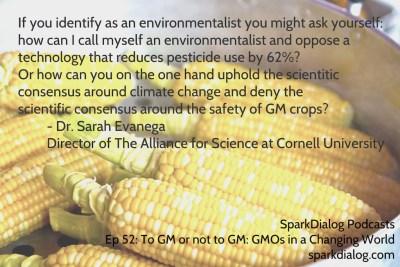 Environmentalism and GMO