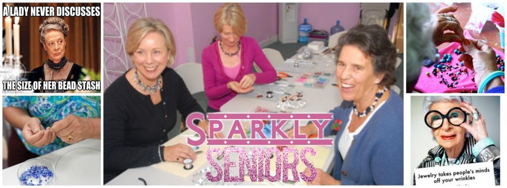 sparkly senior banner