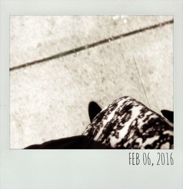 Polaroid Feb 6