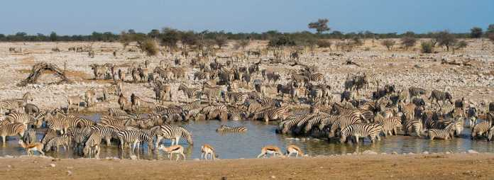Namibia Best places for vacation in Africa