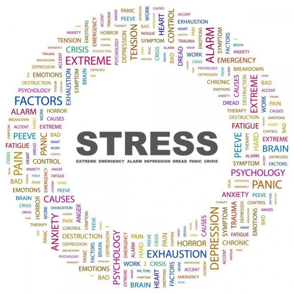 Live a Life Less Stressed – Part 2