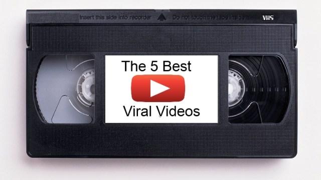 best_viral_vids