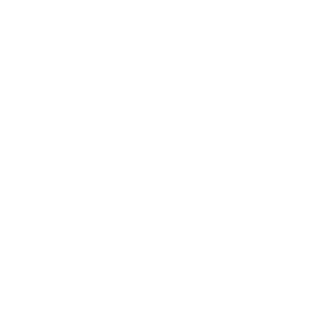 Buds and Roses