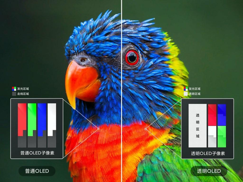 Normal OLED subpixels vs. transparent OLED subpixels