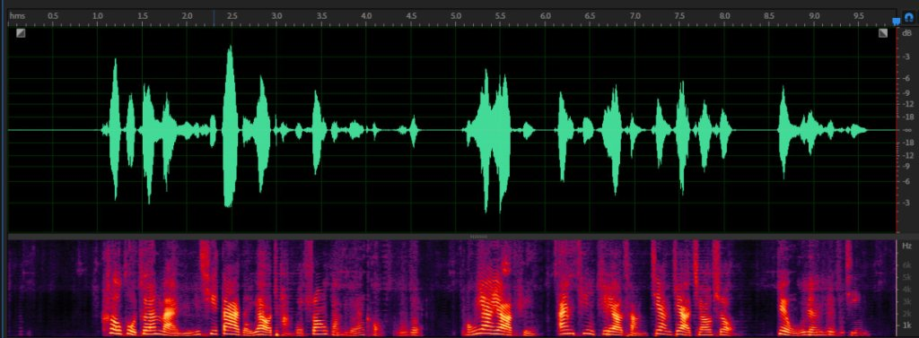 GVoice Optimized Waveform Map
