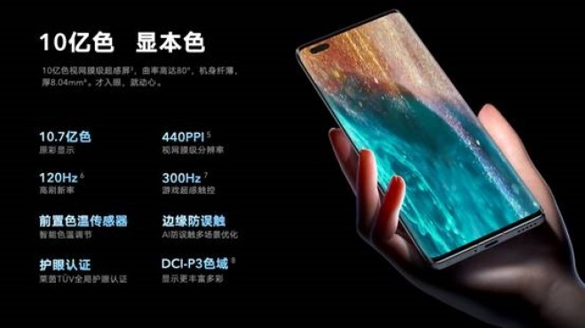 Honor V40 Display Specifications