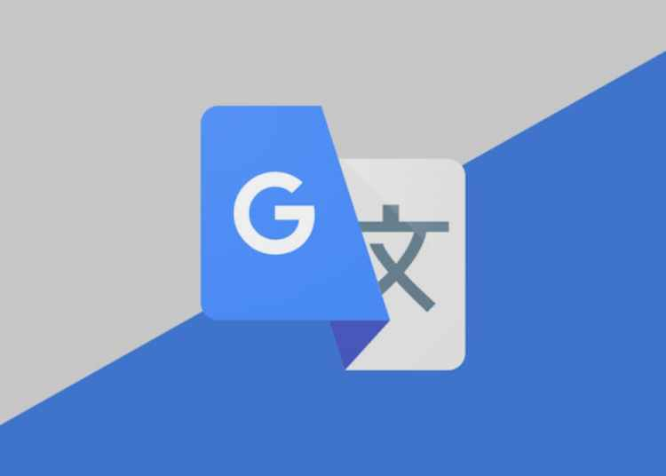 Google Translate adopt Material You
