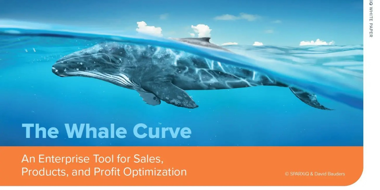 whale curve white paper