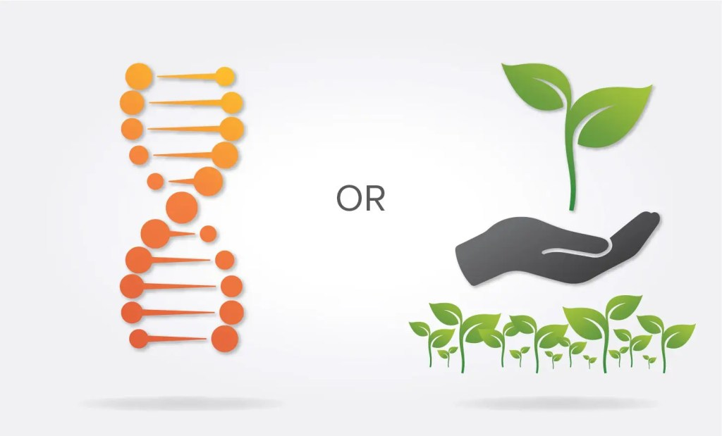 building a high performing sales team with nature vs nurture