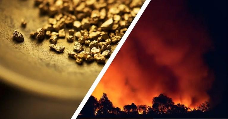 Vendor cost increase - gold rush or wildfire