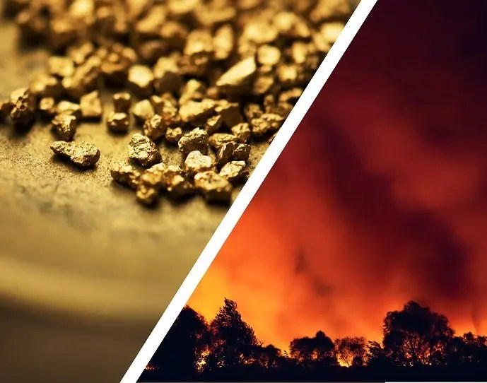 vendor cost increases - gold rush or wildfire
