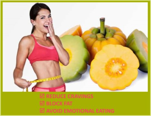Garcinia Cambogia 85% HCA weight loss