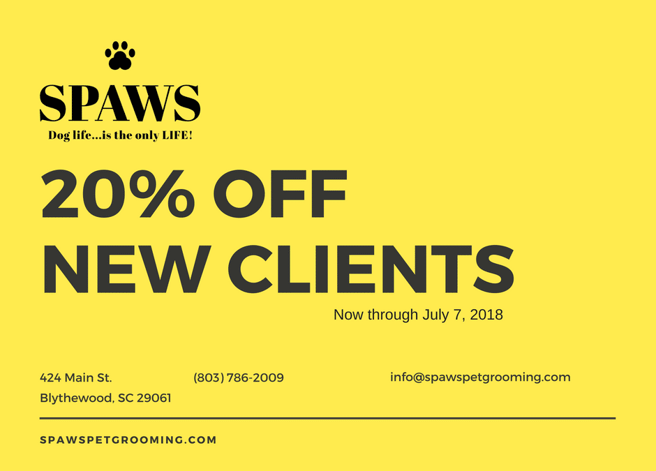 20% Off for New Clients