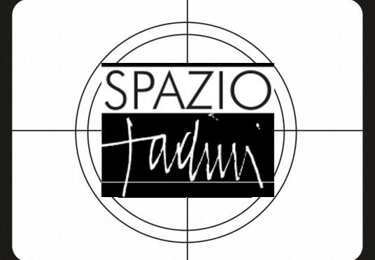 scopri le interviste agli artisti e ai fotografi sul nostro canale youtube SPAZIO TADINI