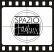 spazio tadini video logo