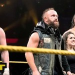 WWE: I piani originali per the SAniTy