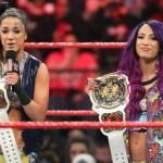 WWE: Perchè sono stati introdotti i Women's Tag Team Championship?