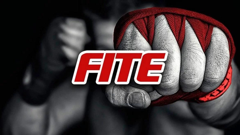 WWE: La WWE vuole comprarsi FITE TV?