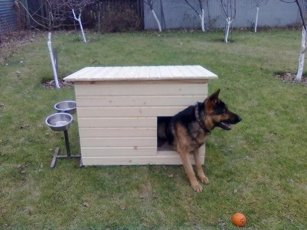 Размер собачьей будки для немецкой овчарки: Как построить ...