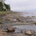 Комаровский пляж (Комарово)