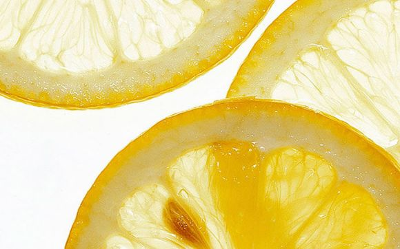 684_1lemon_slices_03_togashi