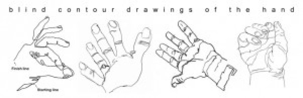 Blind Contour hand drawings